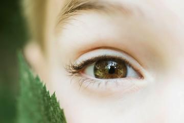 Macro shot portrait of boy with brown eye