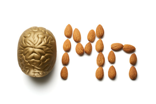 Brain and almond nuts isolated on white. Top view