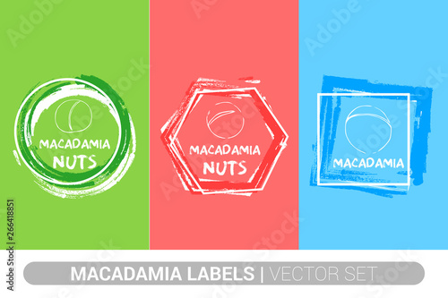 Macadamia nuts colorful label set  Raw organic nuts Badge shapes