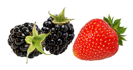 Fototapete - Strawberry and blackberry  isolated on white background