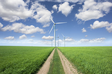 Road to wind park with green sustainable energy