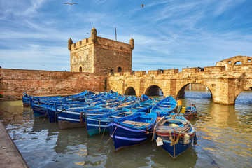 Garden Poster Morocco Sqala du Port, a defensive tower at the fishing port of Essaouira,