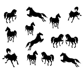 vector isolated drawn black silhouettes of galloping and jumping horses on white background