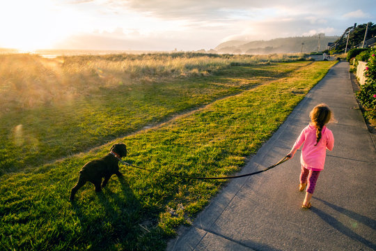 A toddler aged girl walking her dog on a path near the ocean at sunset.