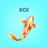 Oriental Golden Koi Fish With Black Spots Vector  Showa