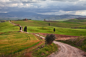 Pienza, Siena, Tuscany, Italy: the Val d'Orcia hills where the movie The Gladiator was filmed