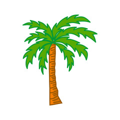 Palm trees isolated white background Vector Design