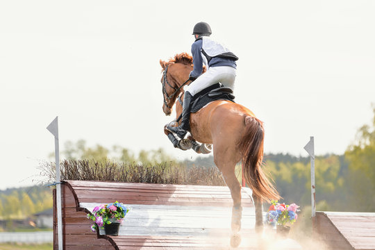 portrait of horse jumping (eventing competition)