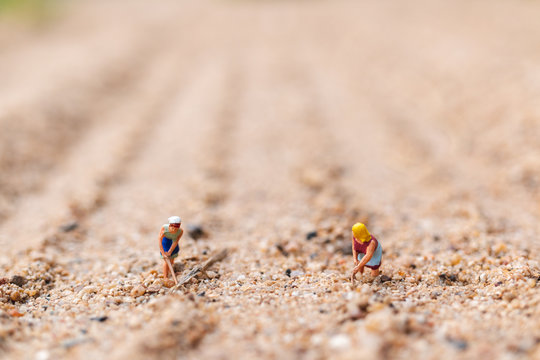 Miniature people : Farmer working plot in the desert with copy space for placement your text,  Agriculture concept