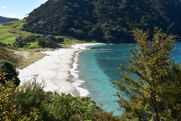 View of white sand and clear sea of Smugglers Bay from Bushby Head near Whangarei on sunny day.