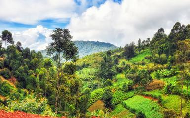 Rural landscapes in western Rwanda.