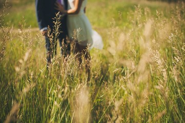The groom in a classic suit and the bride in a short white light dress, in the tall green grass. A guy and a girl holding hands, walking in the summer Park.