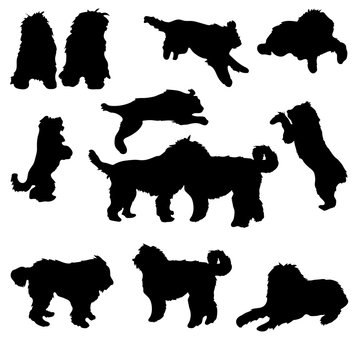 Set of black silhouette of dogs bobtail on white background.