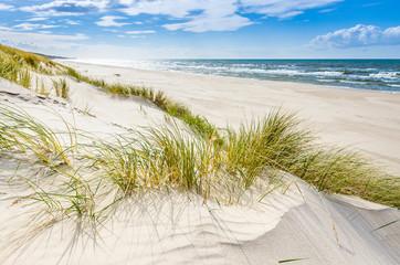 Fototapeta Pusta dzika plaża koło Mrzeżyna nad Bałtykiem w Polsce obraz