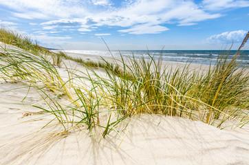 Fototapeta Pusta dzika plaża koło Mrzeżyna nad Bałtykiem w Polsce