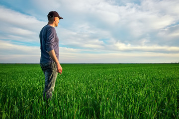 Handsome farmer. Young man walking in green field. Spring agriculture Wall mural