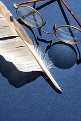 Old Spectacles And Feather
