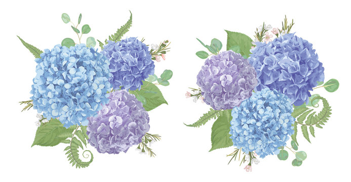 Set of wedding bouquets.Leaves, blooming branches eucalyptus, gaultheria, salal, chamaelaucium, fern.Blue, purple, flower of hydrangea.All elements are isolated and editable.Floral pastel style
