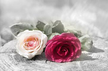 zwei Rosenblüten auf Holzstamm, Design für Trauer Karte