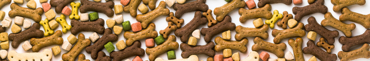 banner of dry animal pet food isolated on white background