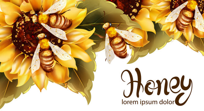 Bees making honey from sunflower Vector watercolor. Label template. Summer banner posters