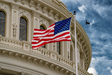 Wall Mural - Washington DC capitol with waving flag