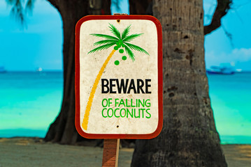 """Sign """"Beware of falling coconuts"""" on Koh Tao in Thailand, Asia"""