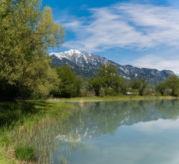 Wall Mural - springtime landscape with snowcapped mountains and pond in green forest