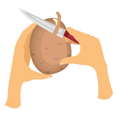Picture how to peel potatoes from the peel. The left hand holds potatoes, the right hand holds the knife and gently cuts the skin. Vector illustration.