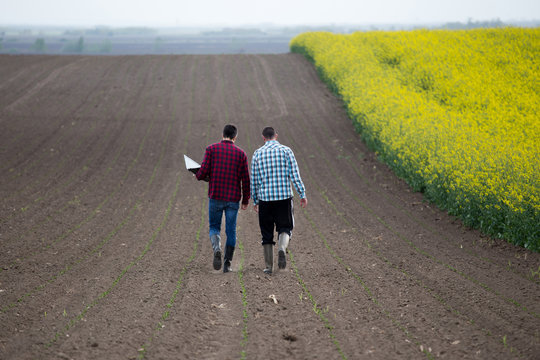 Farmers with laptop in rapessed field