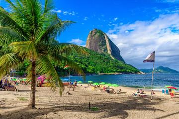 Mountain Sugarloaf and Red beach in Rio de Janeiro, Brazil. Wall mural