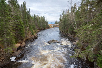 Wall Mural - The Brule River