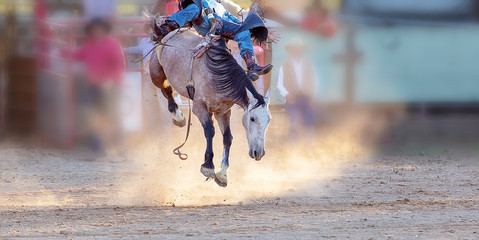 Bucking Horse Riding Rodeo Competition