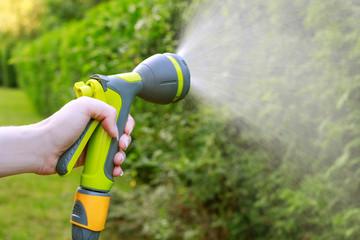 Watering plants. Woman holding garden hose.