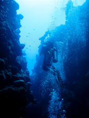 Silhouette of a diver swimming out of an underwater canyon in Dahab, Egypt