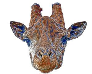 fractal giraffe head face isolated on white