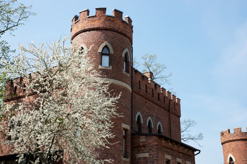 Red Brick tower in the park. Tree in foreground