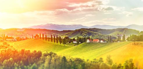 Austria Vineyards Leibnitz area south Styria travel spot. Vivid Fototapete