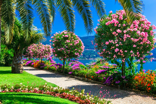 "Beautiful gardens of famous italian lake Lago mggiore. ""Isola madre"". northen Italy, Lombardia"