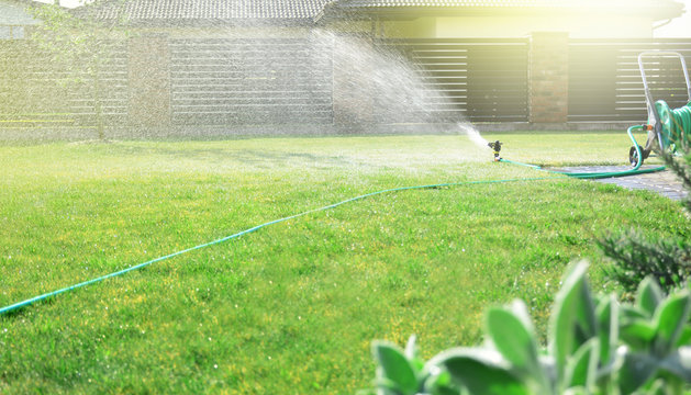 Lawn sprinkler watering green grass