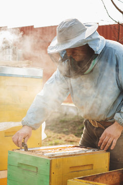 Frames of a bee hive. Beekeeper harvesting honey. The bee smoker is used to calm bees before frame removal