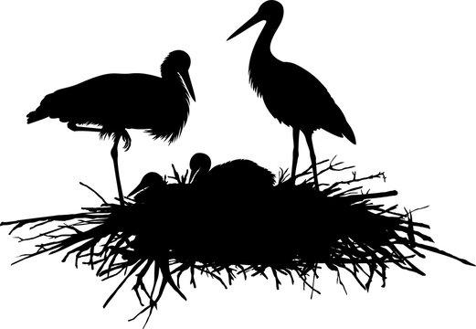 vector silhouette family of storks in the nest