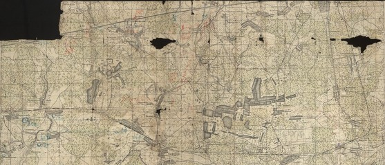 Wall Mural - Soviet topographic military map of WW2