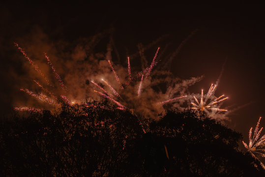 Yellow fireworks exploding on black sky