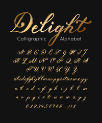 Vector gold font and alphabet. Set of cursive letters and numbers. Brush type
