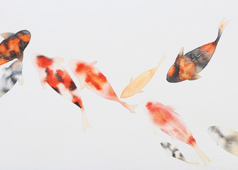 Fish painting with watercolor on white paper