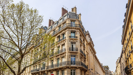 Architecture of Paris France. Facades of a traditional apartment buildings Wall mural