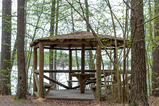 Woodland. Summer house on the lake in the woods.