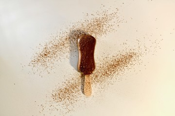 Chocolate ice cream on a stick. Sprinkled with cocoa. On a light background. View from above.
