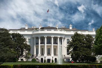 Wall Mural - White House in Washington DC